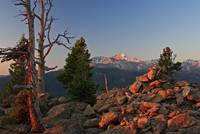 Longs Peak at Sunrise