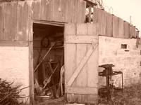 Back Door to Tool Shed