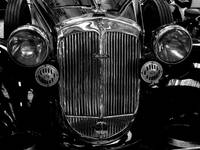 Car front grill (Black and white)