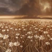 """Plains"" by rpancoast"