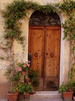 Flowered Tuscan Door