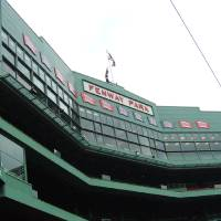 fenway Art Prints & Posters by lyn tamm