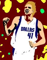 Dirk Nowitzki Shadow Color
