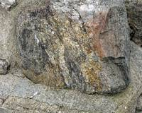 Organic Quality of the Rockface