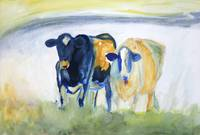 Two Cows in Yellow and Blue
