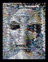 Alien...Amazing Montage Mosaic illusion pop art