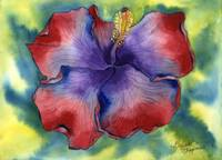 Red & Purple Groovy Hibiscus
