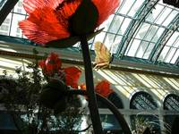 Bellagio Conservatory - by mike_ch