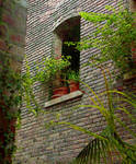 Brick with Greenery