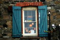 Savanah Street Window