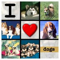 I HEART DOGS ON WHITE 6000x6000