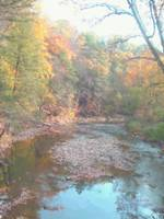Fall along the Wissahickon (2007)