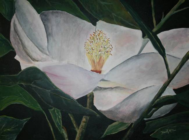 Magnolia Flower Painting On Canvas By Derek Mccrea