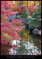 Sparkling Autumn Reflection Poster by Carol Groenen