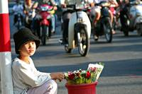 Selling Roses on the Streets of Saigon
