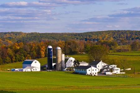 Fall in Amish Country by Lou Ford