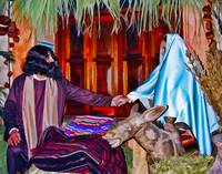 Christmas Scene: Waiting in the Stable for Jesus