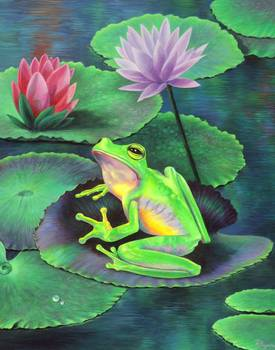 Frog on Lilypad by artist Vivien Rhyan. Giclee prints, art prints, animal art; frog art, frog with lilies; from an original  painting