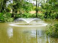 Newent Fountain