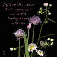 Life is not about waiting for the storm to pass, i