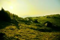 Morning on Velika Planina