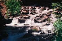 Mountain River Near Crested Butte