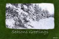 Snow-Covered Evergreen Trees - Seasons Greetings