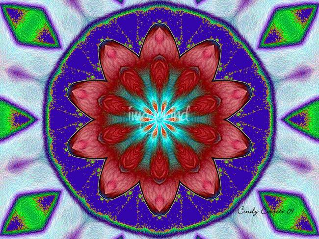Kaleidoscope Flower 11