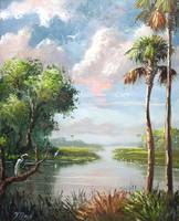 Florida River View