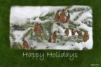 Snowy Tree with Pine Cones - Happy Holidays