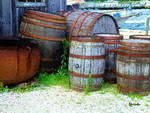 Still Life with Barrels
