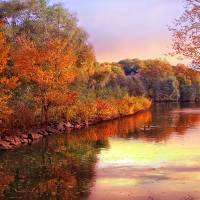 """Twilight Autumn"" by JessicaJenney"