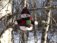 My snowman in a tree 2