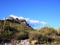 Sabino Canyon 2