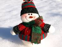 A snowman waiting for Christmas 4