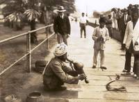 Snake Charmer, Singapour c1910 by WorldWide Archive