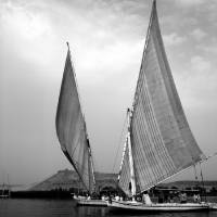 2 Feluccas in Aswan b&w Art Prints & Posters by Donna Corless