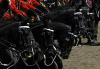 RCMP Musical Ride - The Pinwheel