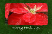 Mottled Red Poinsettias 1 - Happy Holidays