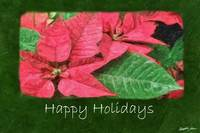Pink Poinsettias 4 Painterly - Happy Holidays