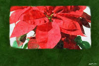 Red Poinsettias 1