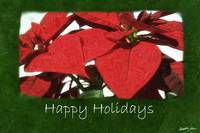 Red Poinsettias 2 - Happy Holidays