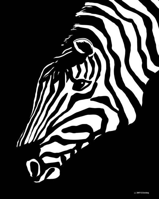 Zebra Art By Waterart