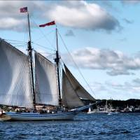 Full Sails by Donnie Shackleford