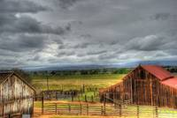 Vineyard Storm by Paul Gaither
