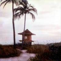 Path to Lifeguard Stand Hollywood Beach, Florida by Joe Gemignani