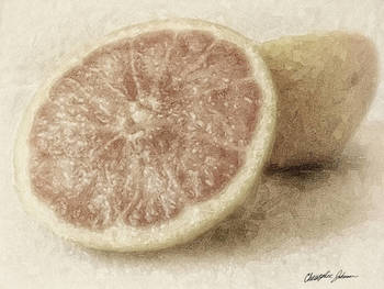 Grapefruit 1 Vintage