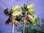 Palms in the Wind by Mazz Original Paintings