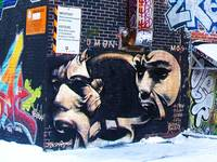 Graffiti Montreal 15