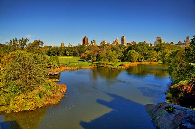 Turtle Pond within Central Park in Autumn